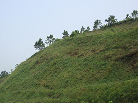 喷混植生植草边坡绿化施工工艺